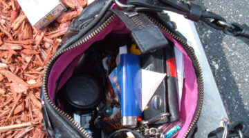 For An Organized Purse These Are The Bare Minimum Things To Keep Inside
